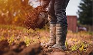 jardiner-et-entretenir-les-sols