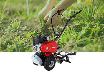 Désherber, éliminer la mousse et les mauvaises herbes
