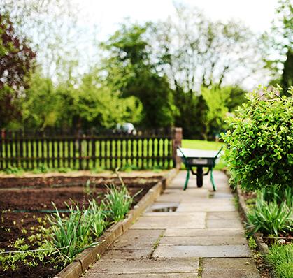jardinage-entretien-pelouse